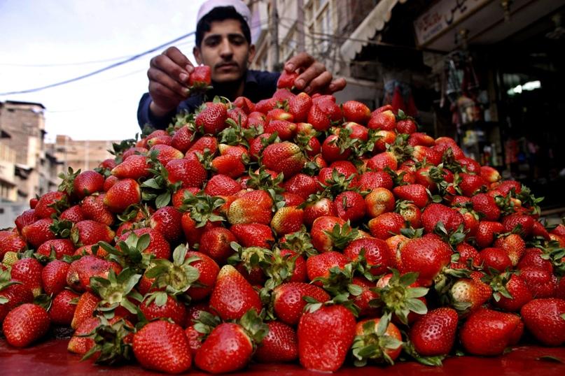 Гид по фруктам Шри-Ланки, изображение №3