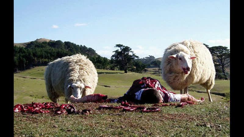 Паршивая овца (2006) ужасы комедия