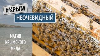 #КрымНеОчевидный: Магия Крымского Меда и секреты его создания