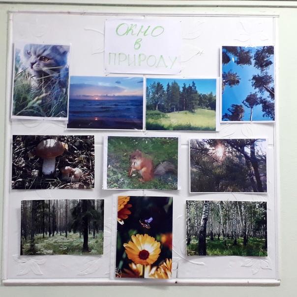 конкурс фотографий природа родного края фелпс