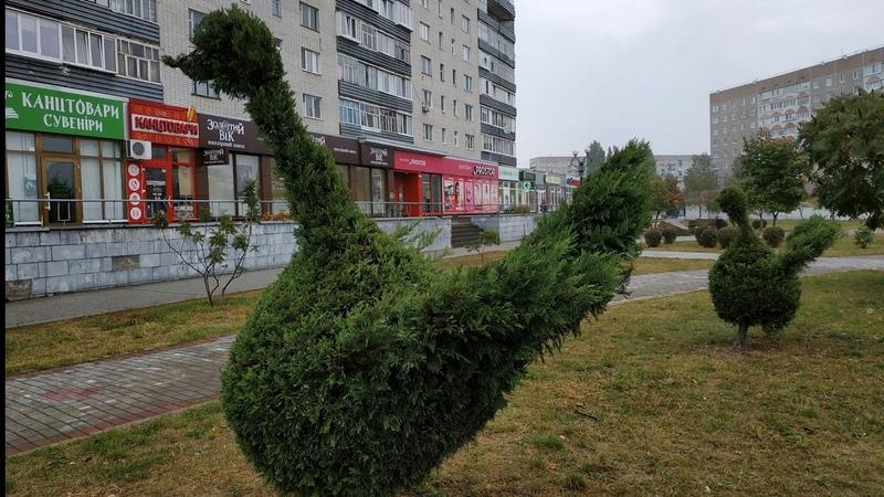 ТОПИАР Topiary ВАРАШ