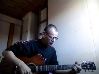 Белая река. Агидель. ДДТ. Ю. Шевчук. cover. под гитару.