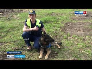 Архангельская областная служба спасения набирает волонтёров