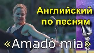 Английский по песням Pink Martini - «Amado mia»