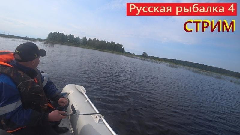 Русская рыбалка 4 Троллинговая рыбалка на Ладожском озере Изучаем Ладогу и апаем 27 лвл ВПК РР4