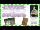 Сетон Томпсон Мои дикие животные» видео
