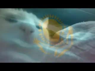казахский кот флек$ит под трек я казах