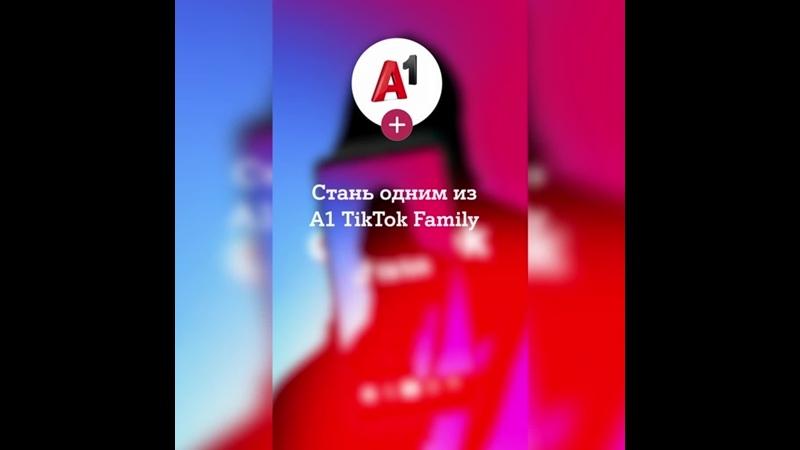 Кастинг A1 TikTok Family