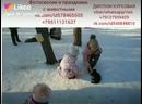 Like_6796477526783932619.mp4