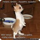Фотоальбом Оксаны Кузиной
