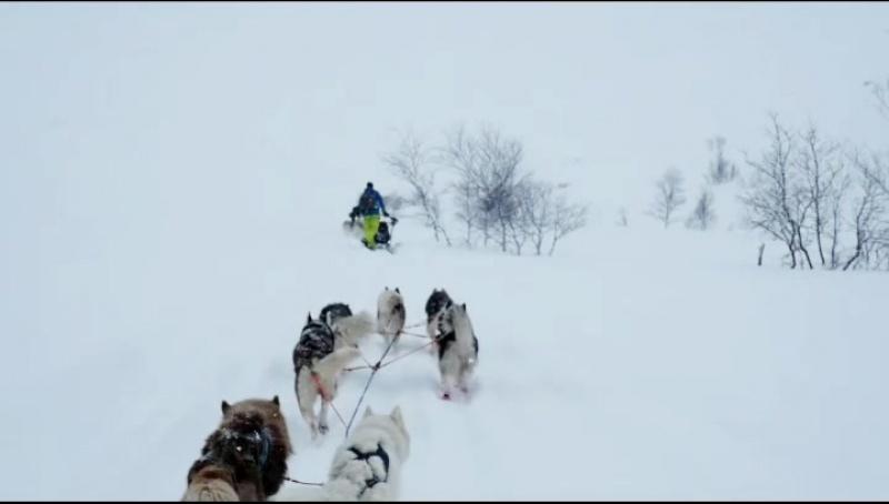 Перевал Рамзая на собачьих упряжках
