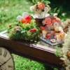 wESTevents/Свадьба в Эстонии-стильно и доступно!