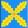 Сайт Хохольского района