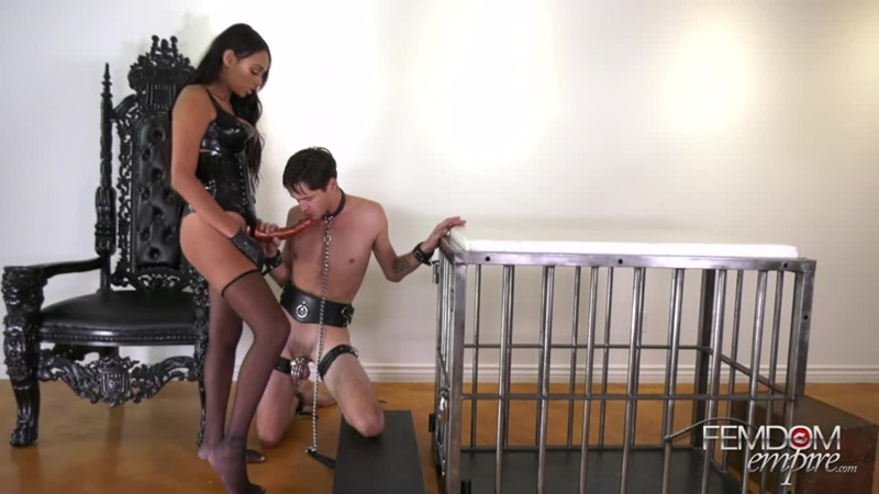 Bethany Benz Russian Hole Stretcher 2019, Femdom, Strapon, Pegging, Anal, Stockings,