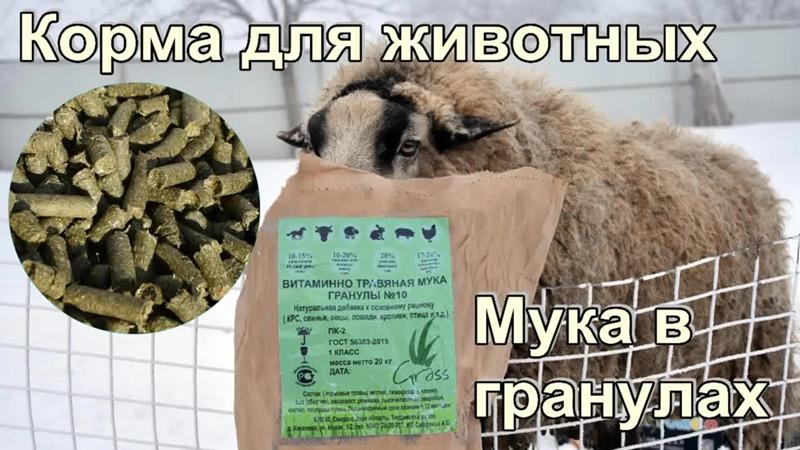 Корма для животных. Витаминно-травяная мука в гранулах. Опыт ввода в рацион для овец, баранов