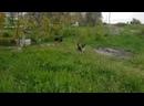 Эльдар Богунов посетил тюрьму Черный дельфин