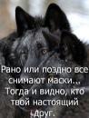 Персональный фотоальбом Антона Клабукова