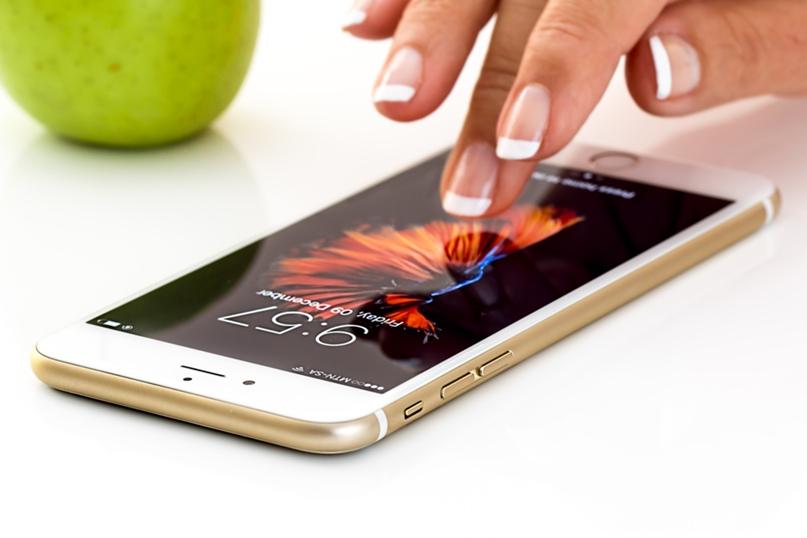 Проблема приватности государственных мобильных приложений, изображение №1