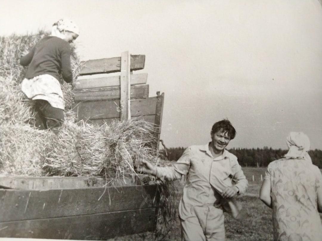 Сегодня - День работников сельского хозяйства! Фото