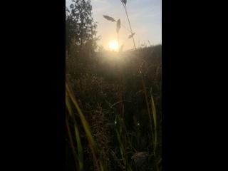 วิดีโอโดย Ekaterina Smmetanova