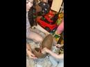 Видео от Большое Яйцо из Шоколада Mr. Choco Surprise