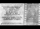 Переводим Черепашки-Ниндзя 1990 / Вечер в стиле VHS! Видеосалон с живым Контентом!