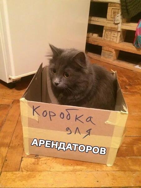 Минстрою предложили выделять 5 млрд рублей в год н...