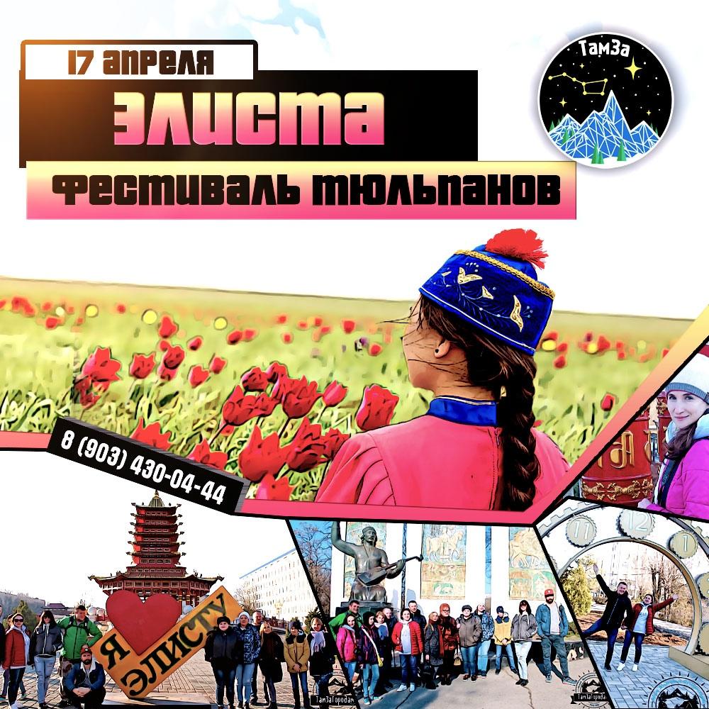 Афиша Ростов-на-Дону 17.04 ЭЛИСТА ФЕСТИВАЛЬ ТЮЛЬПАНОВ