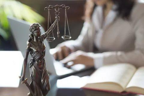 Спор о наследстве юрист Мурманск