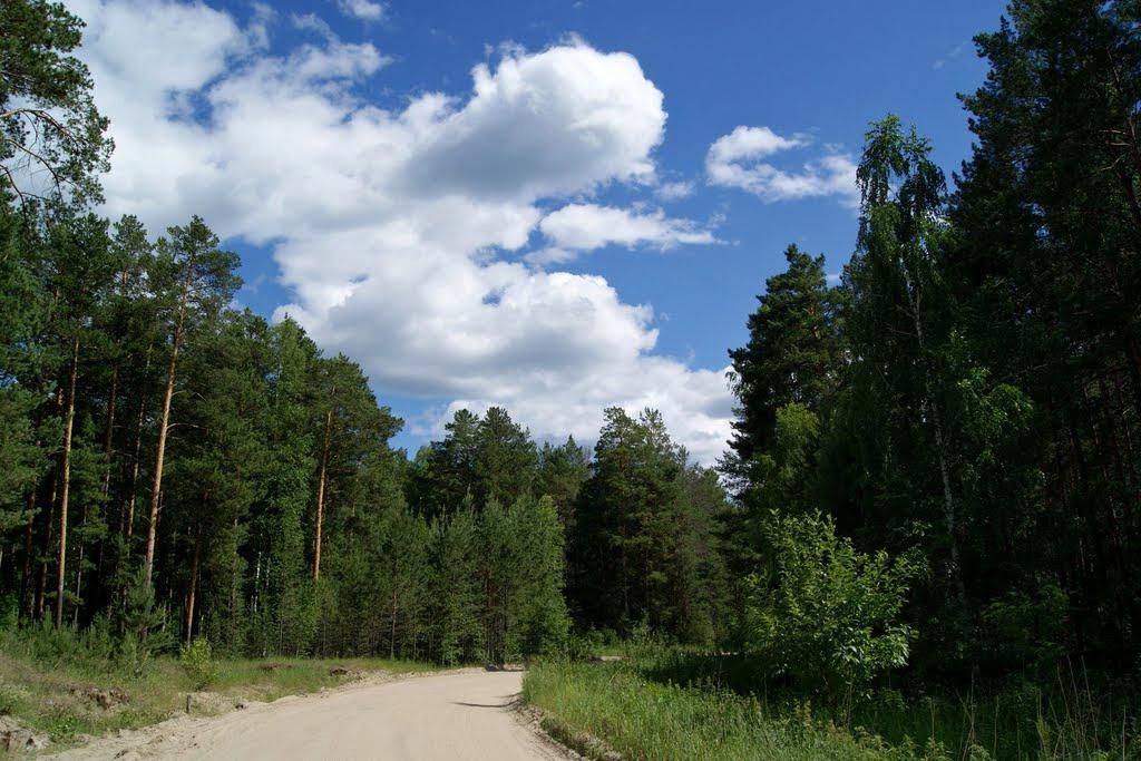 Афиша Новосибирск ПВД теплоход и 95 леса 2021 НВК Райдер
