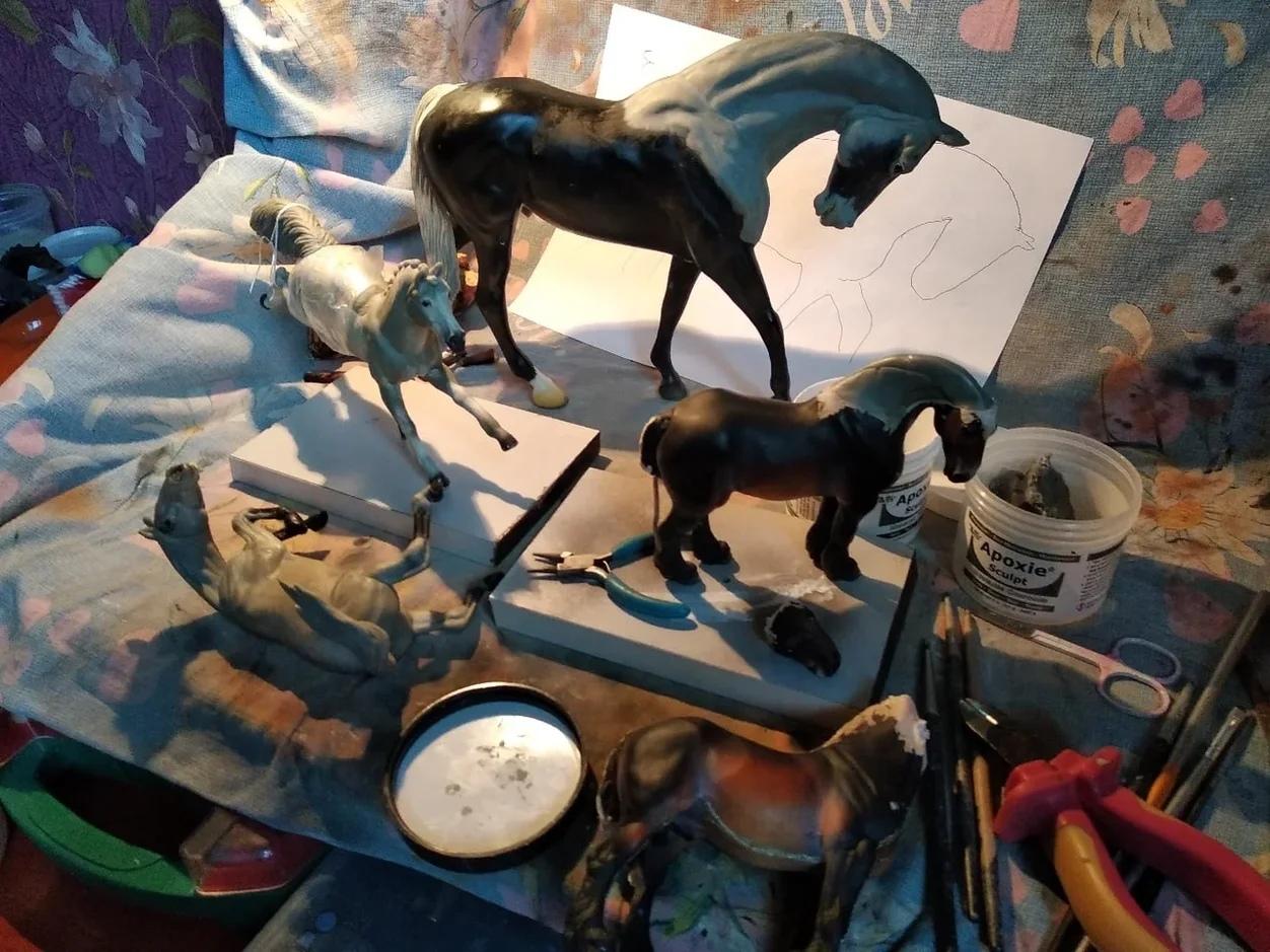 Высокооплачиваемое хобби: художник по конной миниатюре из Тверской области рассказала о своем увлечении
