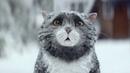 Короткометражный рождественский фильм про кота с переводом