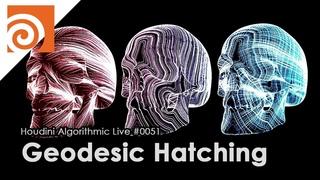 Houdini Algorithmic Live #051 - Geodesic Hatching