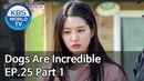 Dogs are incredible | 개는 훌륭하다 EP.25 Part 1 [SUB : ENG/2020.05.13]