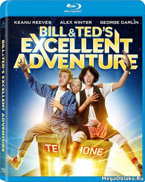 Невероятные приключения Билла и Теда / Bill & Ted's Excellent Adventure (1989/BDRip/HDRip)