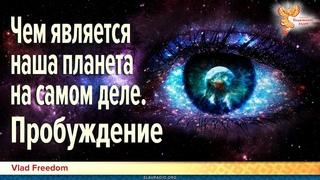 Чем является наша планета на самом деле. Пробуждение. Что такое душа. Урожай душ. Vlad Freedom