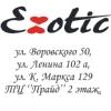 Нижнее белье ❤ Exotic Киров
