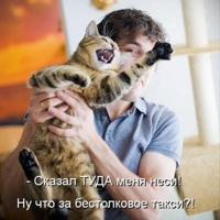 Фотография профиля Дидара Сейтхана ВКонтакте