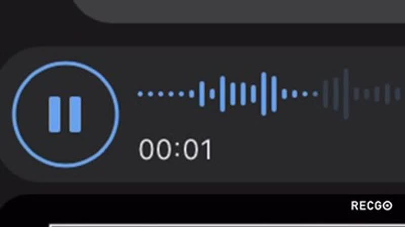Звуки задыхающегося ишака mp4