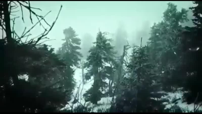 VIDEO-2020-11-28-09-31-32.mp4