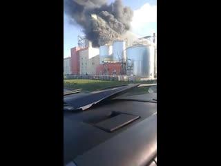 Пожар на целлюлозно-картонном комбинате в Беларуси