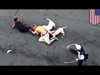 Жительница Бронкса натравила на мужчину двоих питбулей