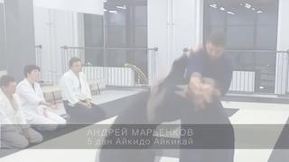 """Айкидо в СК """"Энергия"""". Андрей Марьенков, 5 дан айкидо Айкикай."""