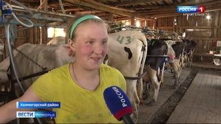 Из-за ситуации в российском сельхозе Кехтинский племзавод оказался в убийственном положении